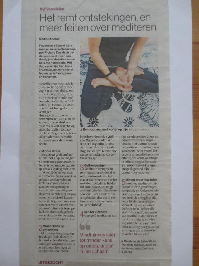 IMG_2991 nov 2017 Brabantsdagblad